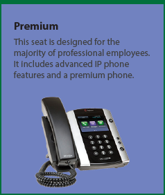 Premium: Designed for the majority of professional employees. It includes advanced IP phone features and a premium phone.