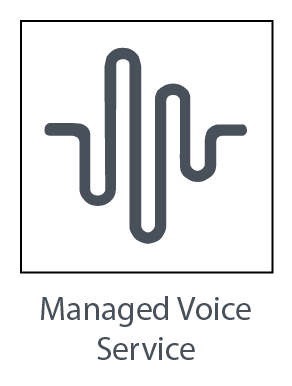 Managed Voice Service
